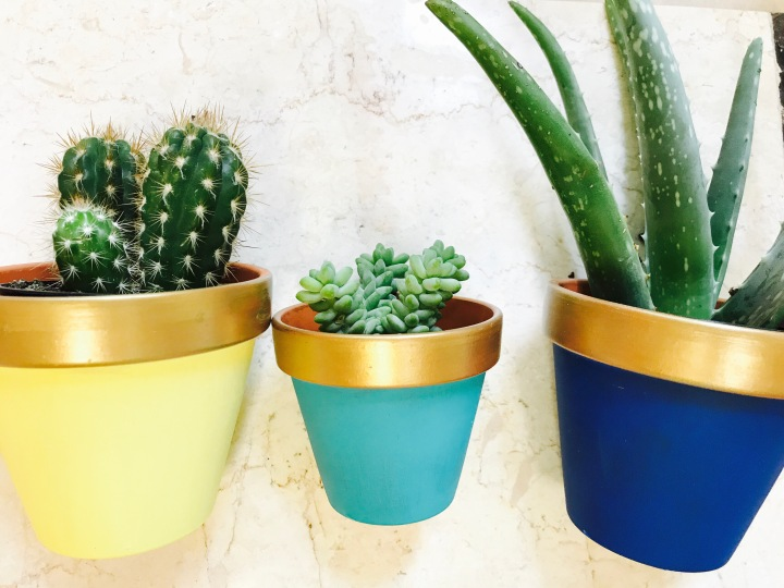Cute DIY Painted Clay Pots…